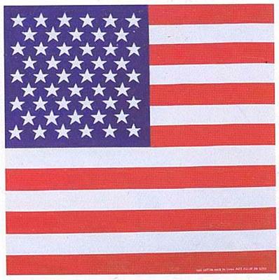 United States Flag Bandana