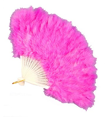 Fan Pink Feather