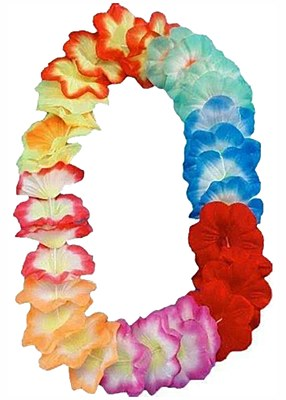Rainbow Flower Petal Lei