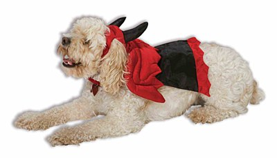 Devil Doggie Pet Costume