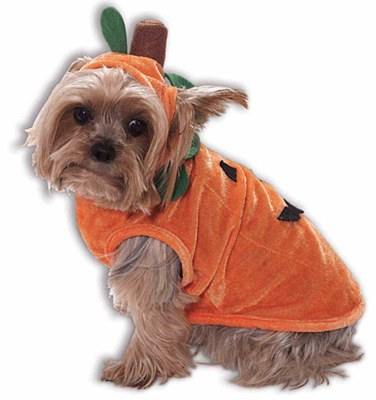Pumpkin Doggie Pet Costume