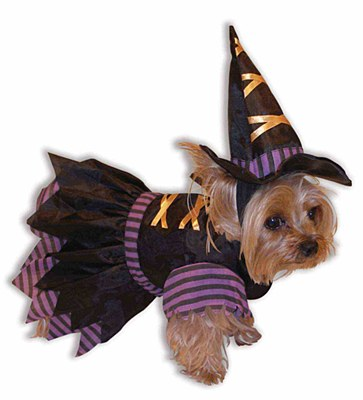 Witch Doggie Pet Costume