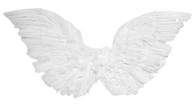 "Angel 12"" Feather Wings"