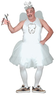 Magical Tooth Fairy Adult Plus Costume