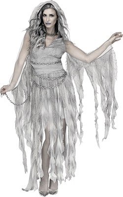 Enchanted Ghost Adult Costume