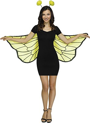 Bumble Bee Wings And Antennae Set
