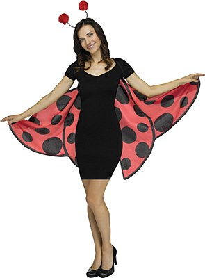Lady Bug Wings And Antennae Set