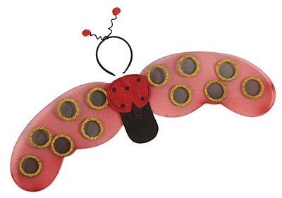 Lady Bug Wings & Antennae Set
