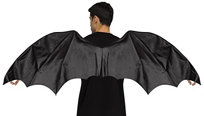 Bat Demon Dragon Wings