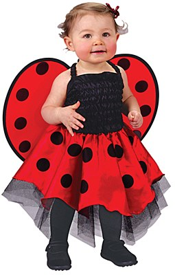 Lady Bug Infant / Toddler Costume