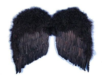 "Angel 24"" Feather Wings"