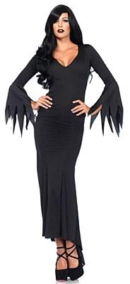 Long Sleeve Tattered Adult  Dress