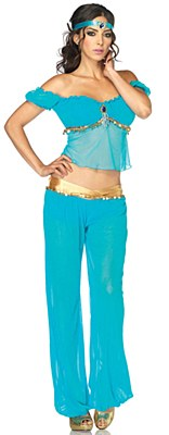 Arabian Beauty Jasmine Adult Costume