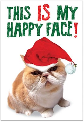 Christmas - Happy Face Cat Greeting Card