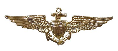 Aviator Naval Insignia Pin
