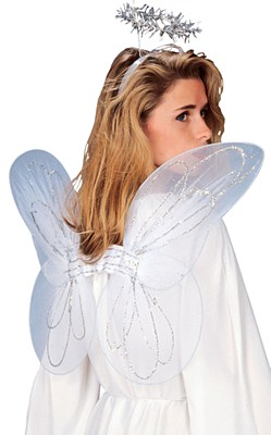 Angel Wings And Halo Adult Set