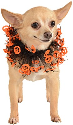 Jack O Lantern Pumpkin Tutu Pet Collar