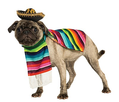 Sombrero Pet Hat