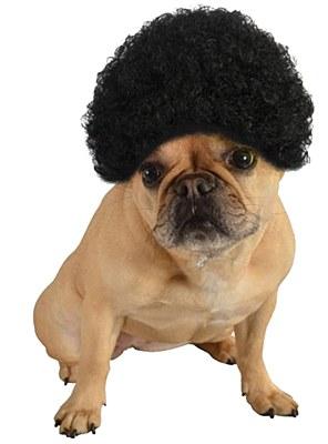 Black Afro Pet Wig