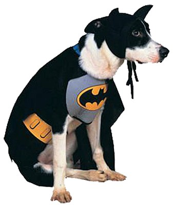 Batman Animated Pet Costume