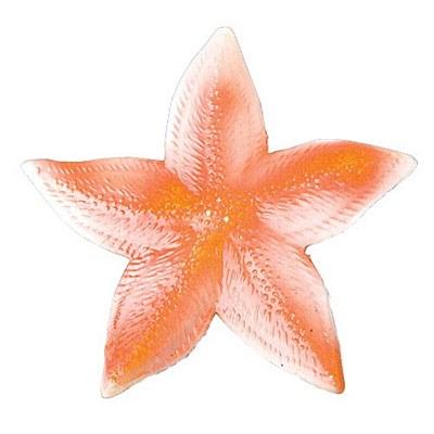 Starfish Prop