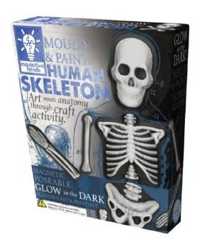 Human Skeleton Kit