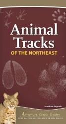 Animal Tracks of the Northeast