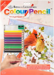 Color Pencil by Number: Cardinals