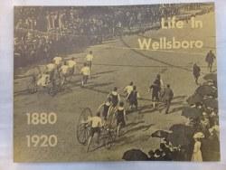 Life in Wellsboro: 1880-1920 PB