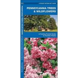 Pennyslvania Trees & Wildflowers