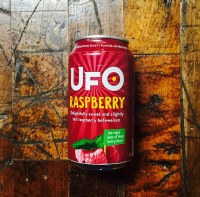 Ufo Raspberry - 12oz Can