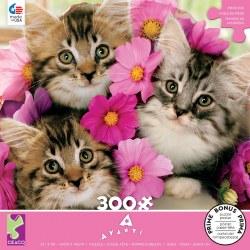 Avanti: Kitten Bouquet 300pc