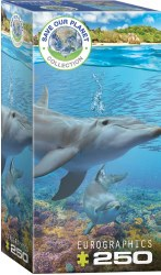 Dolphins - 250pc
