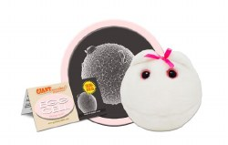 Egg Cell Plush