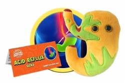 Acid Reflux Plush