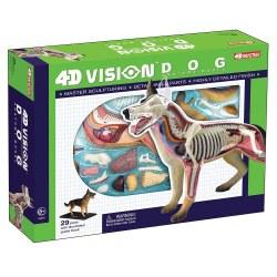 4D Dog Anatomy