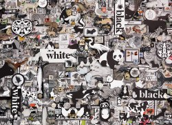 Black and White: Animals - 1000pc