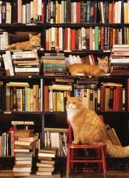 Gotham Bookstore Cats 500pc