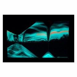 Silhouette: Glowbee Black Sand Art