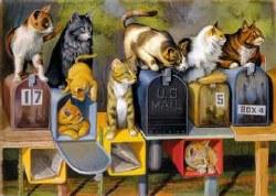Cat's Got Mail - 300pc