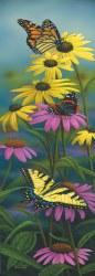 Banner Puzzle: A Splash of Color  500pc
