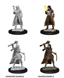 D&D Female Elf Cleric W10