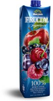 Fructal Superior Multivitamin Red Fruit Nectar With Many Fruits 1L