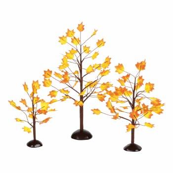 D56  AUTUMN MAPLE TREES SET/3