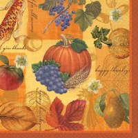 16ct NAPKINS THANKSGIVING SCRAPBOOK DESS