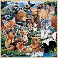 48PC WOODEN PUZZLE FOREST FRIENDS