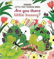 ARE YOU THERE LITTLE BUNNY BOOK
