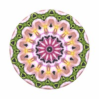 POP SOCKET ORCHID MANDALA