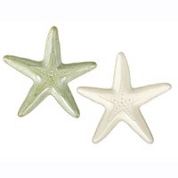 ENCHANTED WATERS STARFISH SERVER SET/2