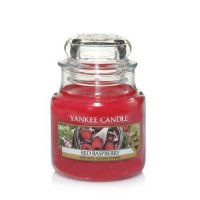 YANKEE SM CLASSIC JAR RED RASPBERRY